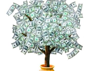 Льем на фруктовые мини-деревья. Профит 168000 рублей