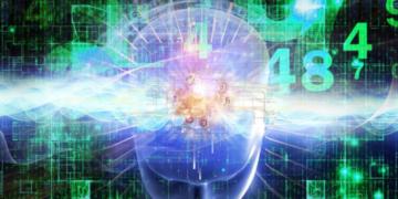 Facebook — Ego4D. Проект искусственного интеллекта от Facebook